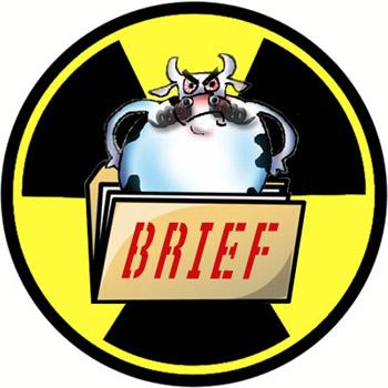 Beef Brief