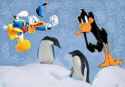 ducks-vs-penguins